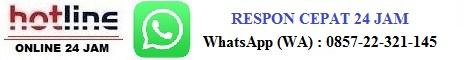 kontak whatsapp wa